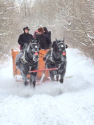 sleigh ride East St. Paul, Manitoba Canada