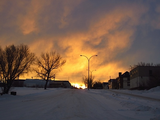 orangey beauty Kerrobert, Saskatchewan Canada