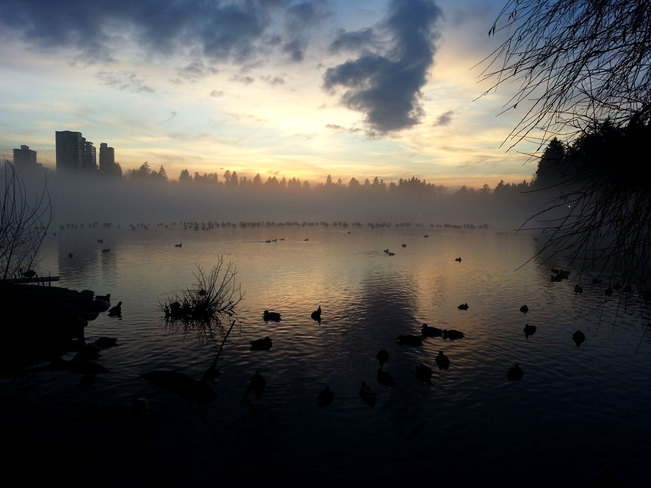 Fog on Lost Lagoon Vancouver, British Columbia Canada