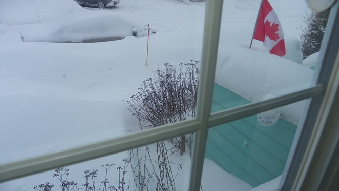 Too much snow in Moncton Moncton, New Brunswick Canada