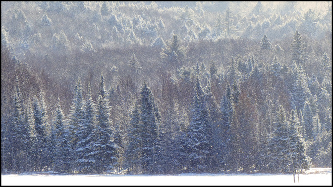 Sheriff Creek scene with sun and snow. Elliot Lake, Ontario Canada