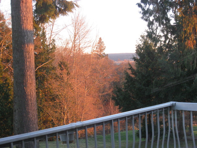sun shining before the snow fall Surrey, British Columbia Canada