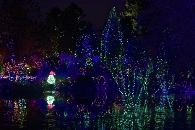 Festival of Lights. VanDusen Botanical Garden. Vancouver BC Vancouver, British Columbia Canada
