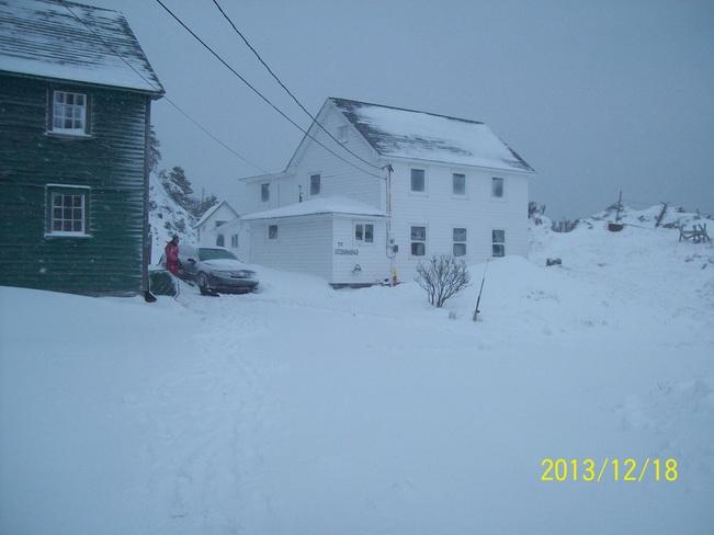 snow storm Twillingate, Newfoundland and Labrador Canada