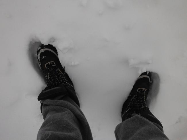 Feet in snow Haldimand, Ontario Canada