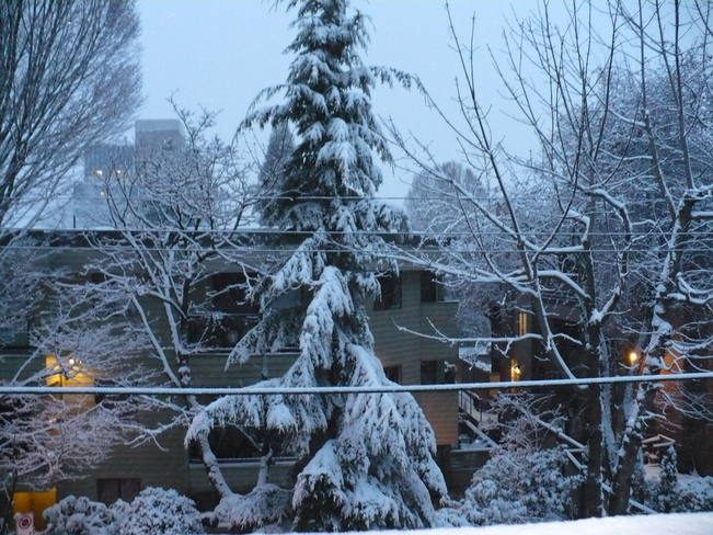 My place in the snow Vancouver, British Columbia Canada