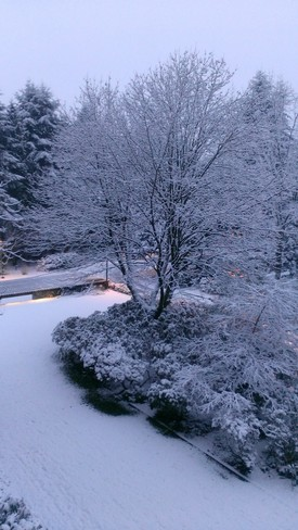 Woke up to Snow ! North Vancouver, British Columbia Canada