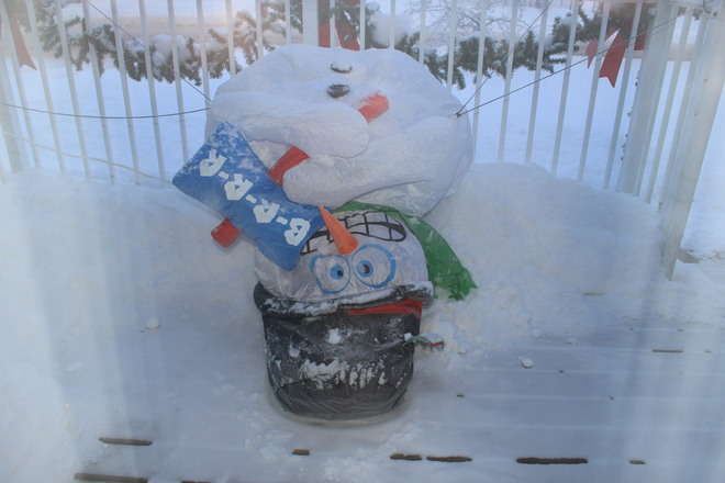 Even the snowman froze! Fort McMurray, Alberta Canada