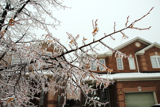 1st Day of Winter 2013 Toronto, Ontario Canada