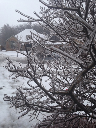 Icy Coating New Hamburg, Ontario Canada