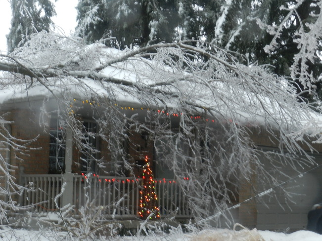 Ice storm results