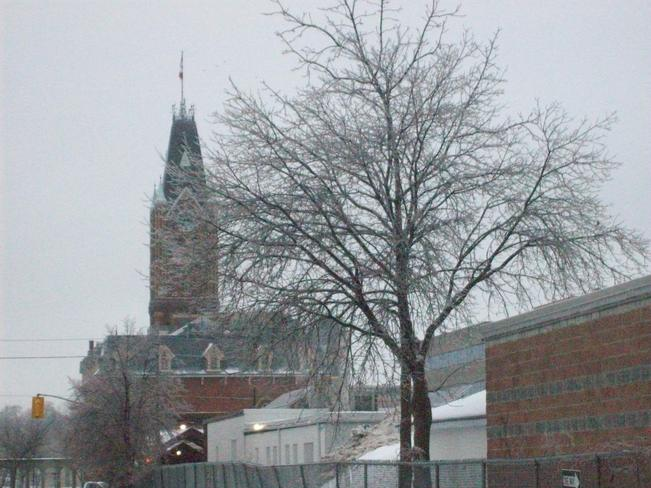 Saturday morning and the Icestorm was still falling onto the city Belleville, Ontario Canada