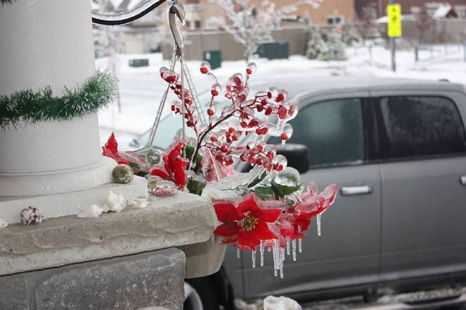 Frozen Christmas Vaughan, Ontario Canada