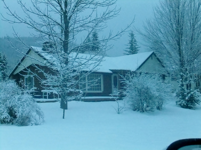light snow in the early morning Fauquier, British Columbia Canada
