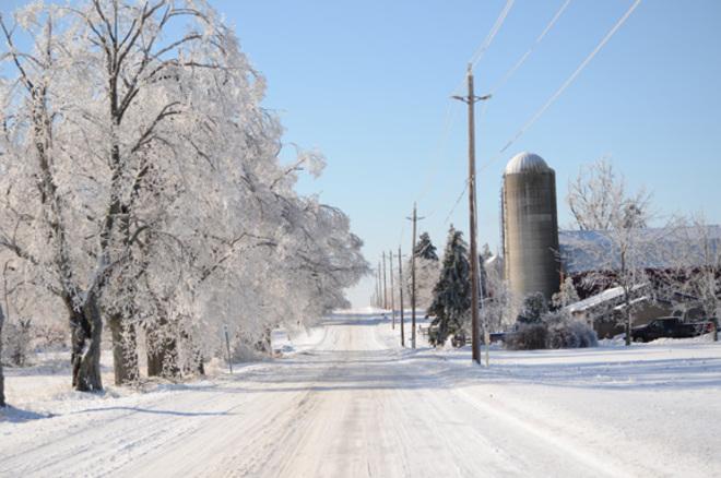 Ice Storm Wooler, Ontario Canada