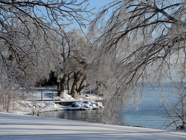 Serenity in the icy aftermath Kingston, Ontario Canada