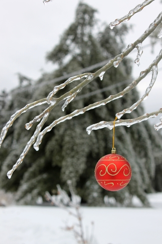 Have An N(ice) Merry Christmas! St. Stephen, New Brunswick Canada