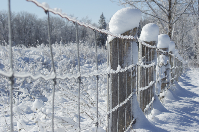Icey Wire Fence Apto, Ontario Canada