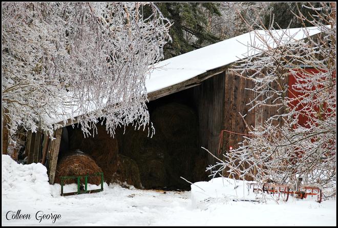 Country Winter Scene Centreville, Nova Scotia Canada