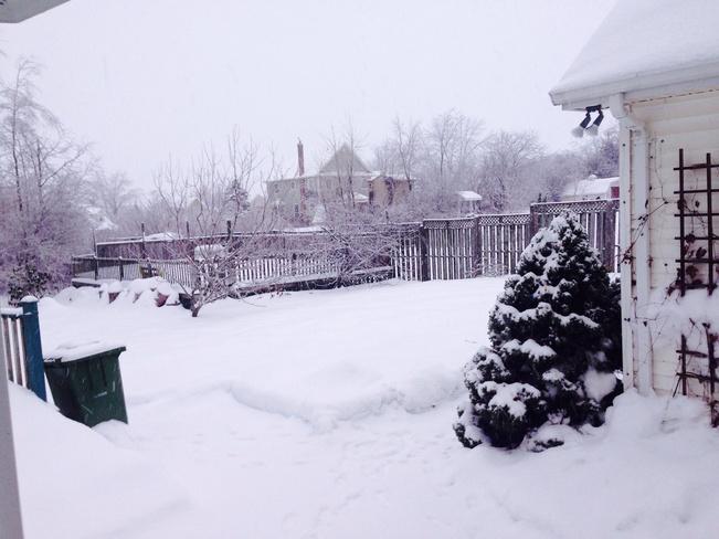 White Christmas Kentville, Nova Scotia Canada