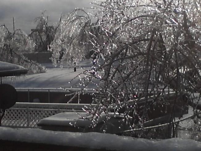 Post ice storm Brampton, Ontario Canada