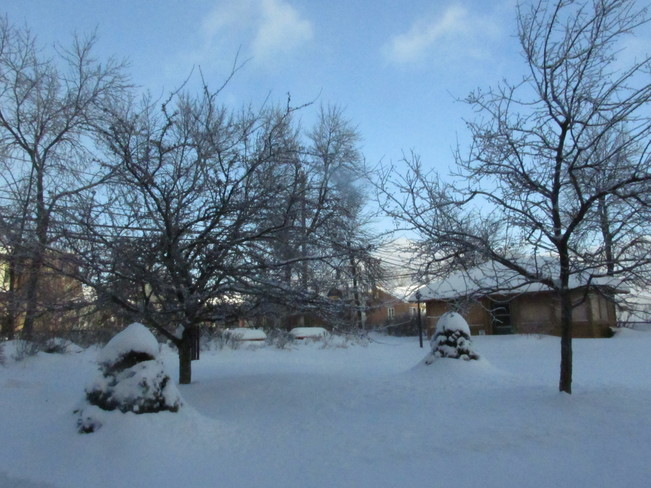 Winter Scene Moncton, New Brunswick Canada