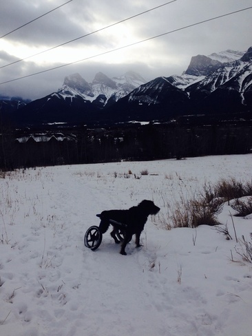 boxing day in the mountains Canmore, Alberta Canada