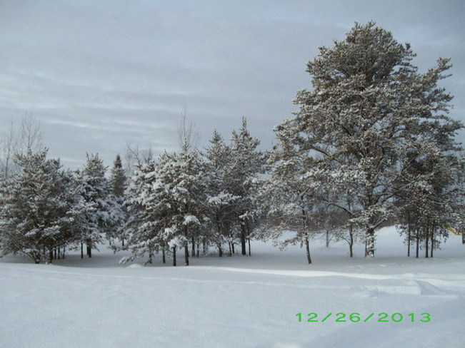 Fresh snow covering Kenabeek, Ontario Canada