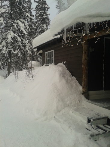 Still snowing...over a foot in two days Whitehorse, Yukon Canada