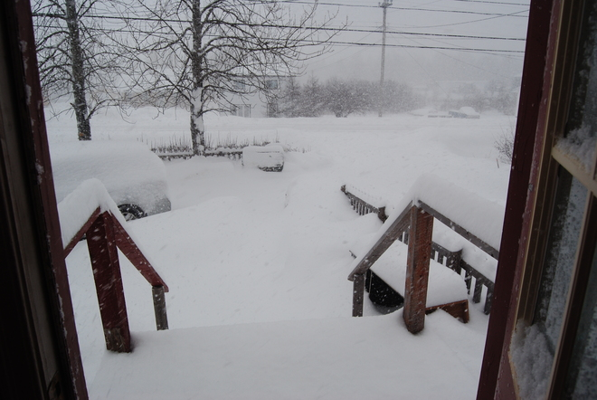 Too much snow! Gambo, Newfoundland and Labrador Canada