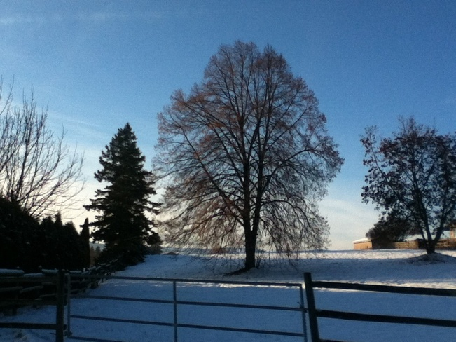 pretty winters afternoon South Vernon, British Columbia Canada