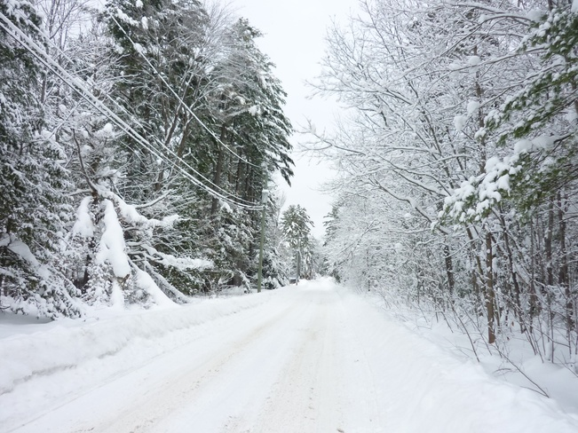 Beautiful Snowy Road Severn Bridge, Ontario Canada