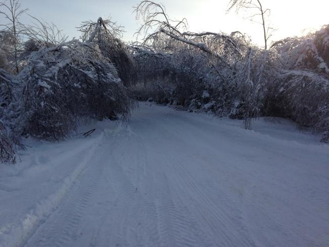 Ice storm cave driveway Casey Corner, Nova Scotia Canada