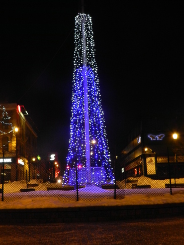 The Blue Tree Barrie, Ontario Canada