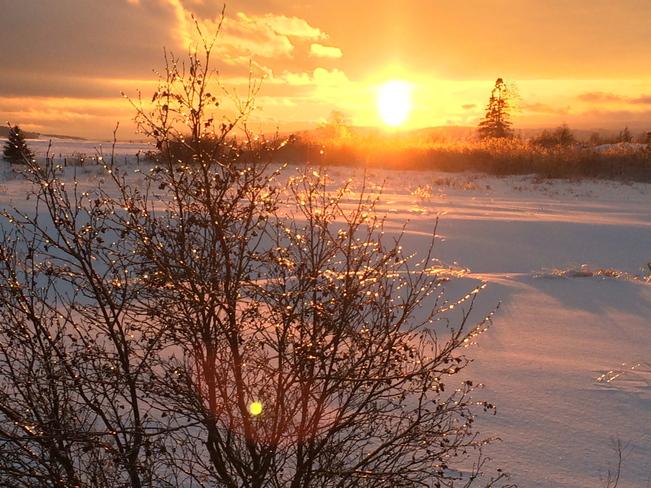 Winter scenery Salisbury, New Brunswick Canada