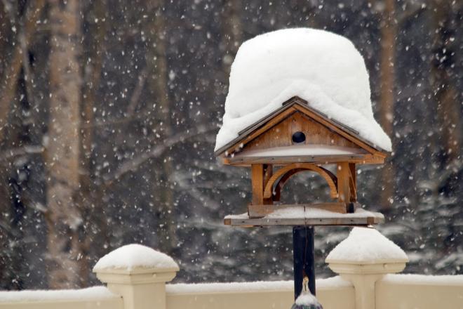 Snowy day in Red Deer Red Deer, Alberta Canada