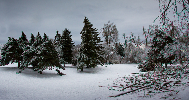 Birch Cliff Heights PS After the Storm Scarborough, Ontario Canada