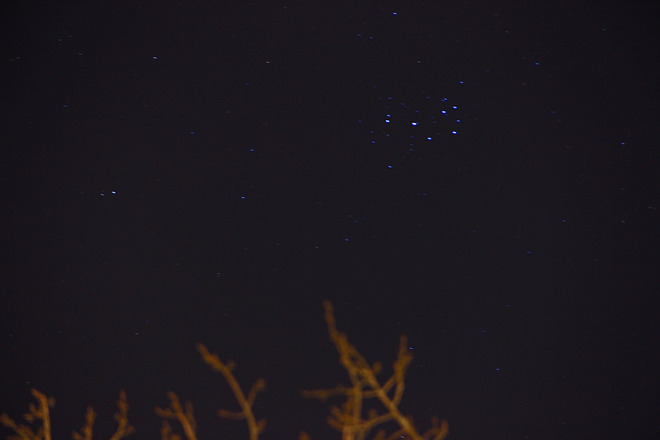 Pleiades open star cluster-all interacting.