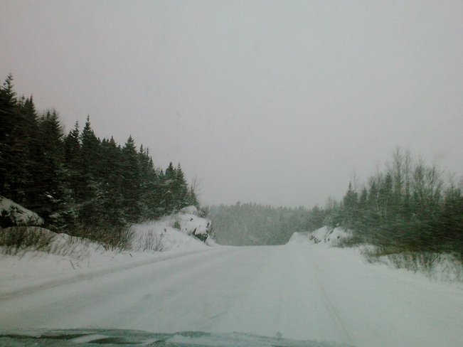 Snowy and Slippery Cottlesville, Newfoundland and Labrador Canada