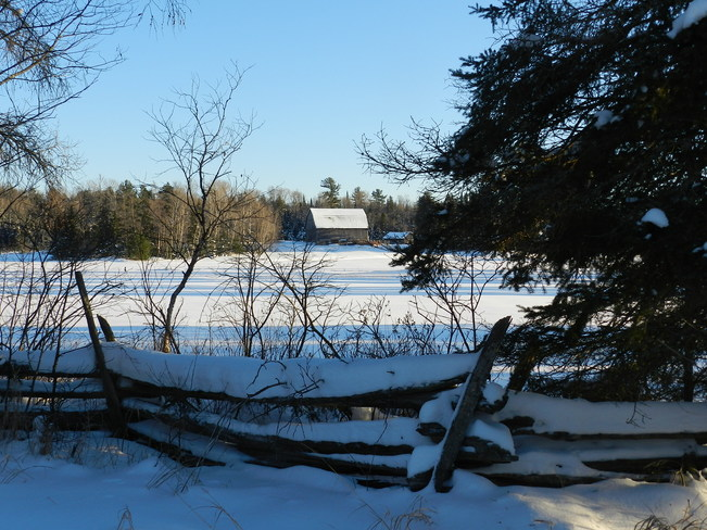 Long Blue Shadows of 2013 Bummers' Roost, Ontario Canada