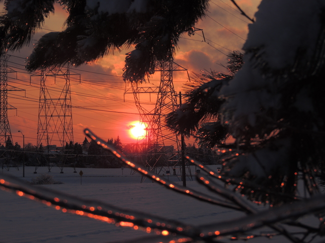 Winter ice storm sunset Scarborough, Ontario Canada