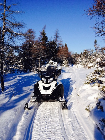 snowmobiling near ten mile lake Flower's Cove, Newfoundland and Labrador Canada