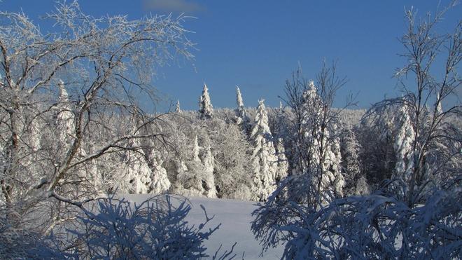 Froide féerie Victoriaville, Quebec Canada