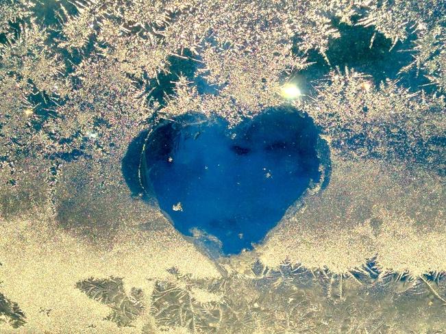 Heart Westmount, Quebec Canada