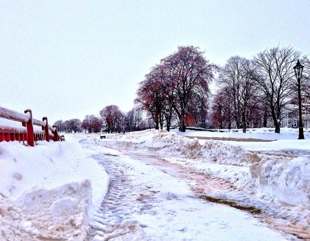 Winter ❄️ Charlottetown, Prince Edward Island Canada