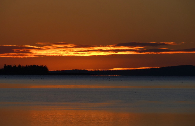 Morning greets with beauty Comox, British Columbia Canada