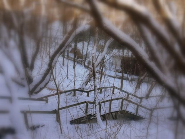 Escalier d'hiver Québec, Québec Canada