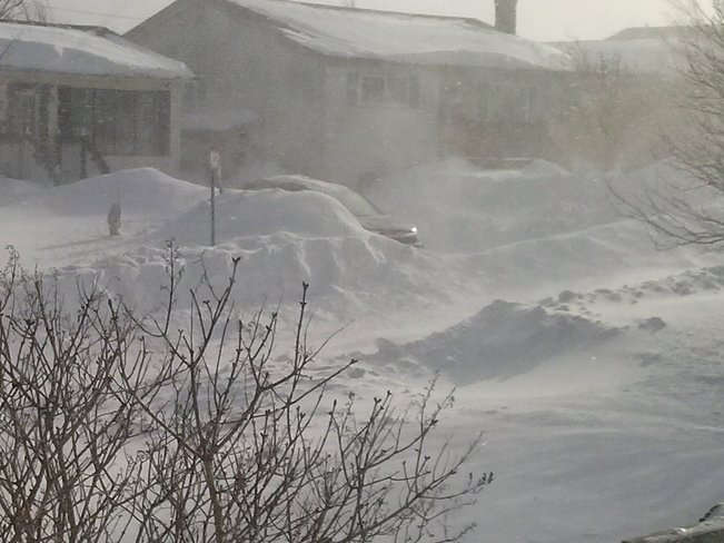 Another dump of snow Mount Pearl, Newfoundland and Labrador Canada