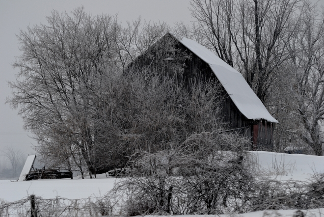Barn with the Red Door onn a Snowy Day! Ingleside, Ontario Canada