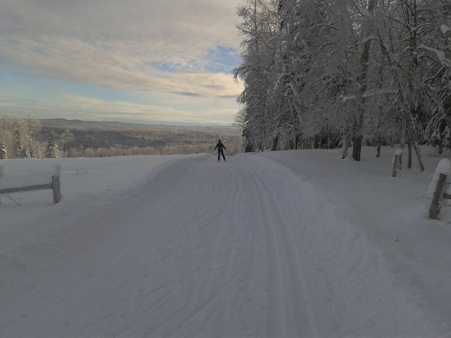 Cross Country Skiing Quesnel, British Columbia Canada